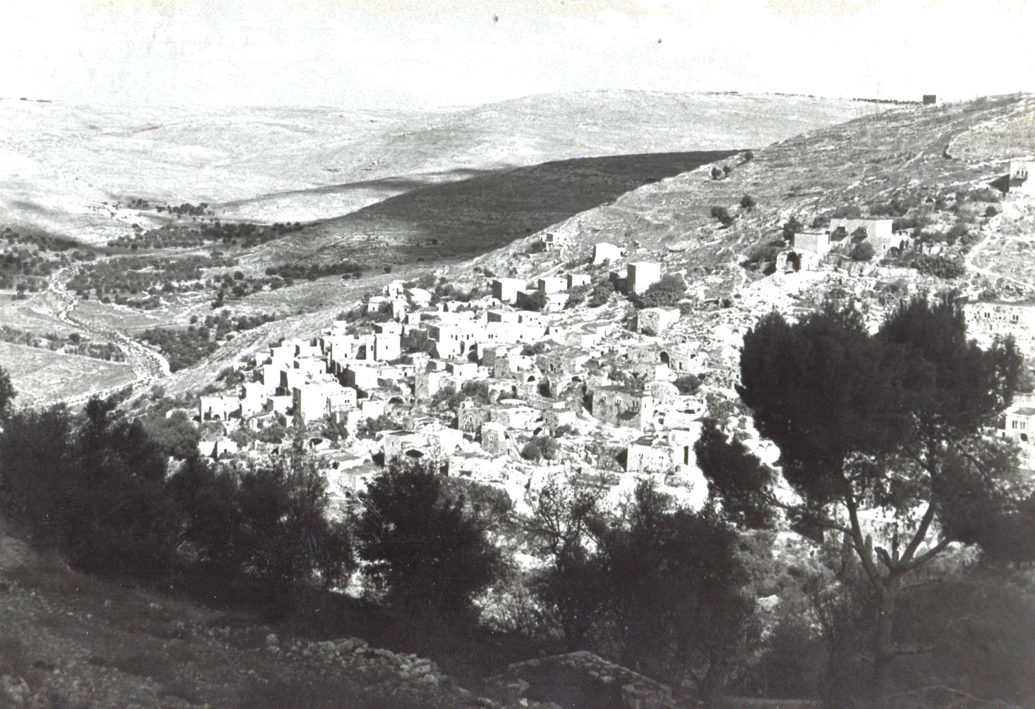 נוף הכפר ליפתא